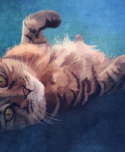 kat-waterverf-tekening